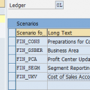 Scenarios and Customer Fields Assignment to the Ledgers